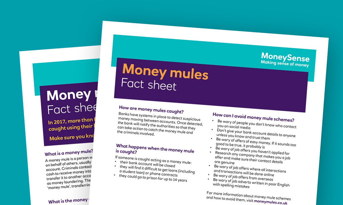 16_18_t7_moneymules_factsheet_index_1200_720.jpg